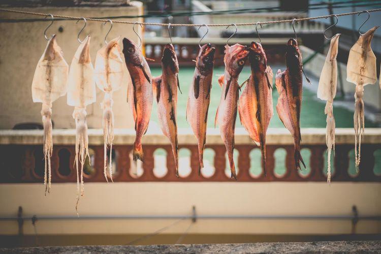 Row of fish on hooks