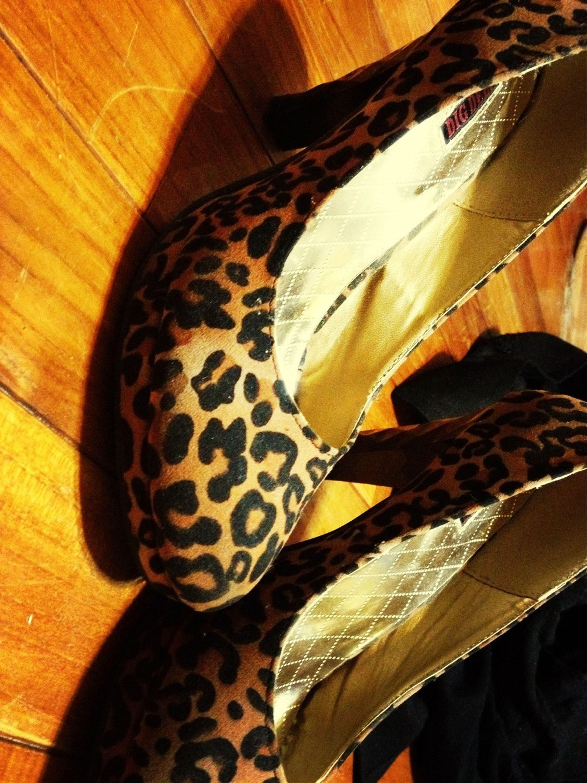 indoors, close-up, high angle view, natural pattern, still life, pattern, no people, leaf, table, nature, detail, day, sunlight, home interior, brown, animal themes, wood - material, one animal, feather, design