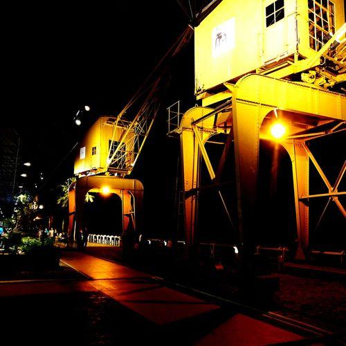 Night Shotononeplus3