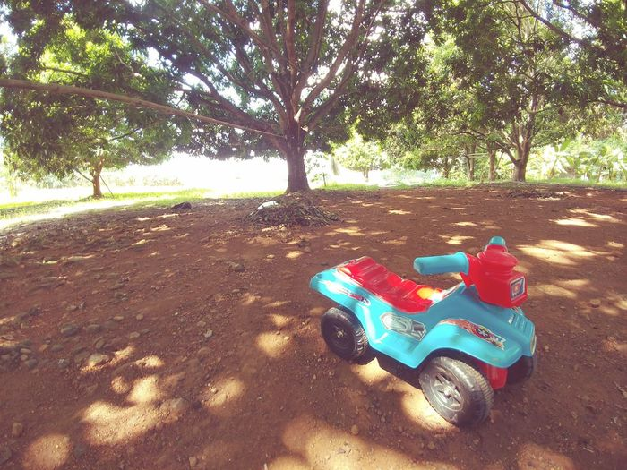 My kid's bike. Costs less than a Harley. 😉 No People Close-up Perspective Beauty In Nature Front Or Back Yard Childhood Baby Babies Only Babyhood High Angle View Baby Vehicle