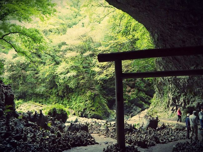 Shrine Getting Inspired Nature Taking Photos Landscape Traveling Japanese