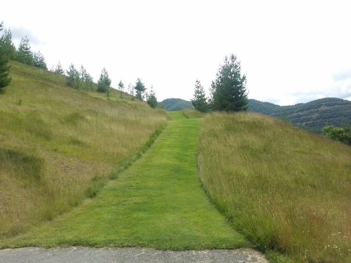Pathway To Heaven Path To Nowhere Pacific Northwest  Grass Photography Grass And Sky Grassy Hillside Grass Country Side Grassy Path Grassy Hill Meadows And Fields Meadow Walk Meadowsinthemountains Contrasting Landscape Pathway Of Peace Contrast Takeover Lost In The Landscape