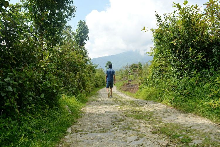 Exploring Sikkim Treavelling Road Less Travelled No Destination. No Aim Just Admiring ! Showcase June Lost In The Landscape