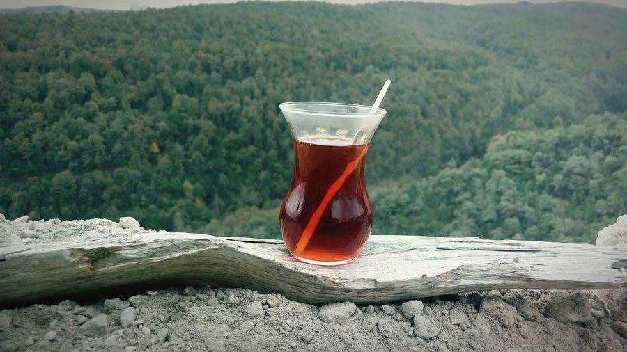 Autumn Mood Tree Drink Water Drinking Glass Alcohol Close-up Food And Drink Tea Crop Teabag Plantation Tea Cup Tea Tea Leaves Black Tea Tea - Hot Drink