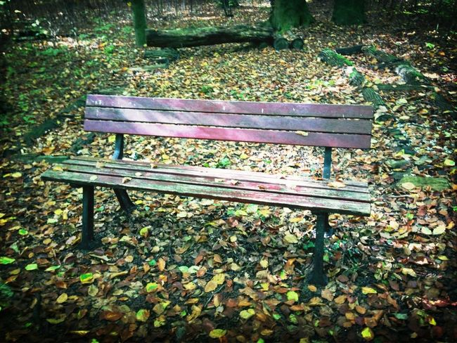 Benches_Of_The_World_Unite