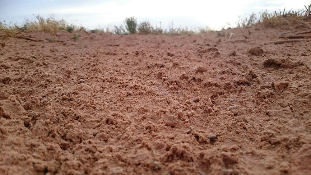 Sand Desert Sahara Desert Sky Clouds Eye4photography  EyeEm Best Shots EyeEm Best Shots - Nature Africa Algeria Adrar ^_^