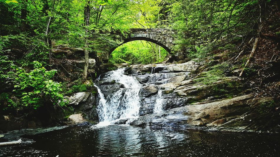 A walk in the woods. Hobbitland Theshire Maine Mainethewaylifeshouldbe Landscape_photography Landscapes Hiking Adventure Waterfalls Waterfall