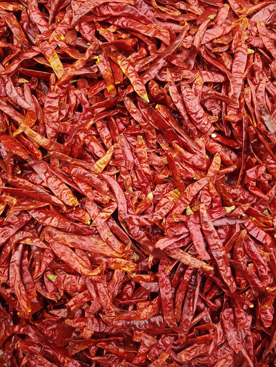 Chile de árbol Chili  Chili Peppers Mexico Spices Market Stall Chile De Arbol Market Backgrounds Full Frame Textured  Red Autumn Close-up