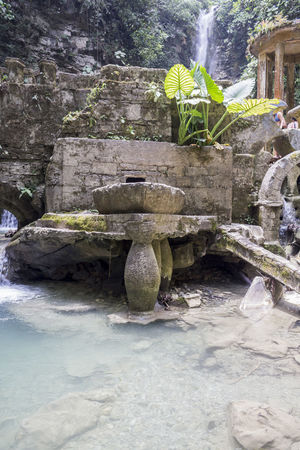 Mexico San Luis Potosí Jardin De Edwar James Naturaleza Pozas Verde Vida Water Xilitla