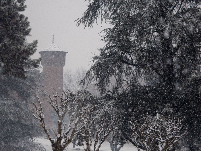 Tree Plant Architecture Cold Temperature Built Structure Building Exterior Snow Winter Nature No People Building Sky Religion Day Snowing Belief The Past History Place Of Worship Outdoors