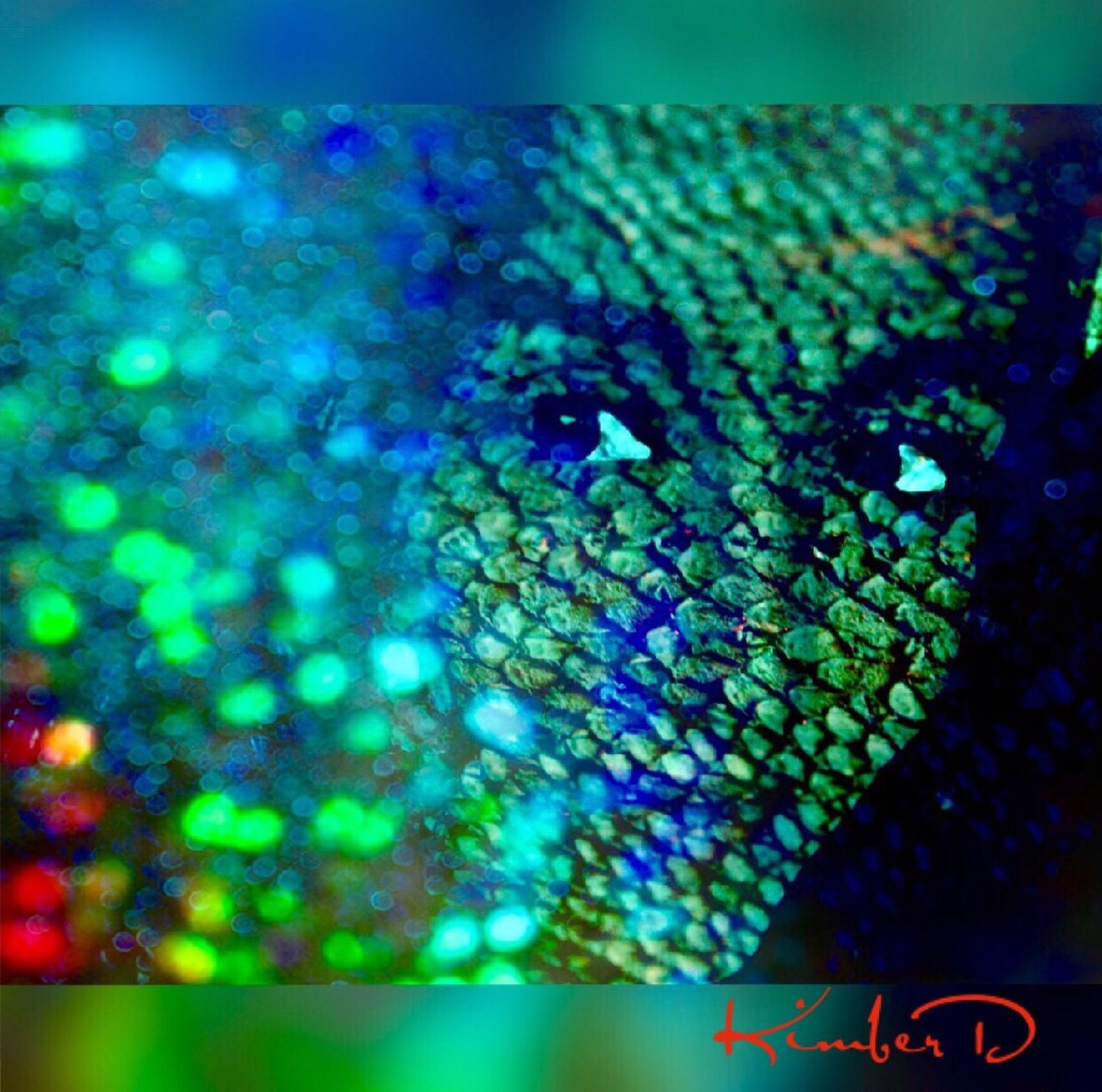 illuminated, water, glowing, night, selective focus, multi colored, vibrant color, blue, decoration, full frame