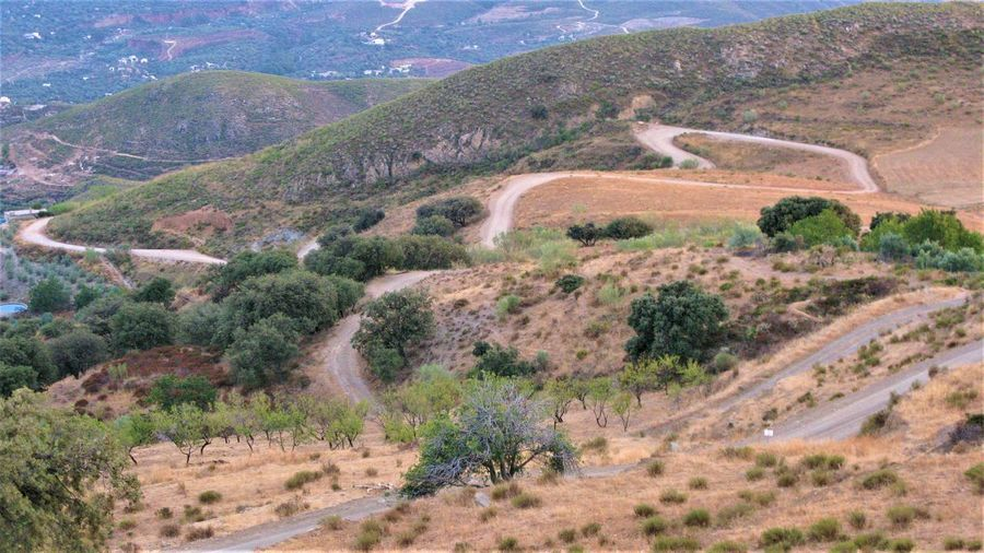 Andalucia Spain Roads Beauty In Nature Beauty In Nature Curvy Roads Landscape Mountain Nature No Cars In This Picture Outdoors Road Scenics - Nature Tranquility Tree