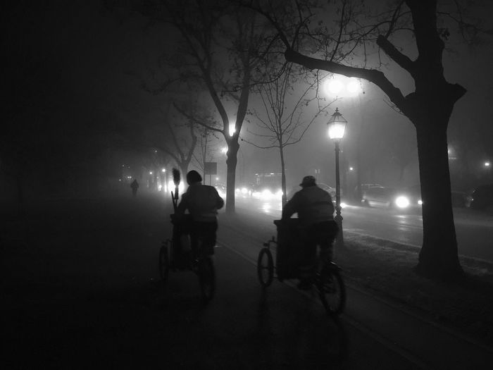 """Garbagemen driving through extensive """"Carpenter style"""" night fog in Zagreb, Marulicev square, Croatia, Dec 9, 2016. Marulicev Square Zagreb Croatia Fog Foggy Night Fog Night Garbageman Waste Collector Bicycle Night Lights Transportation Silhouette Bare Tree Carpenter Dramatic Visibility The City Light The Street Photographer - 2017 EyeEm Awards"""