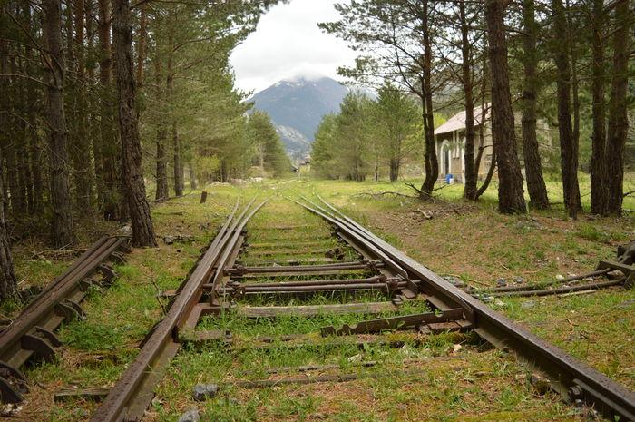 Aragón Aragon, Spain Canfranc Outdoors Railing Nature