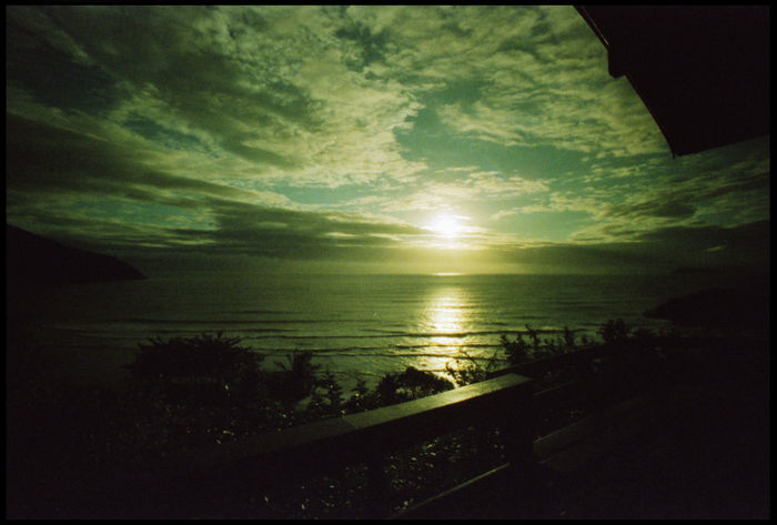 Pleasures of Floripa 35 Mm Backpacking Brazil Cuisine Florianópolis Floripa Floripa Shore Lomography Seafood Travel Auster Beach Beach Ocean Dog On Beach Hammock Joy Ocean Oyster  Shore South America Sunset Surfboard Water Xpro