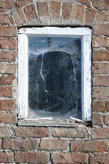 Window Brick Wall Building Exterior Cobwebs Cobwebbed Cobweb Windows Windows And Doors DISUSED Sand Le Mere Sand-le-Mere