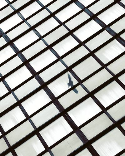EyEmNewHere Backgrounds Built Structure Ceiling Close-up Day Design Eyem Best Shots Eyem Gallery Eyemphotography Full Frame Geometric Shape Grate Grid Indoors  Low Angle View Metal No People Pattern Repetition Safety Security Shape Square Shape Window