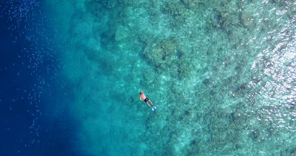 Directly Above Shot Of Man Snorkeling In Sea