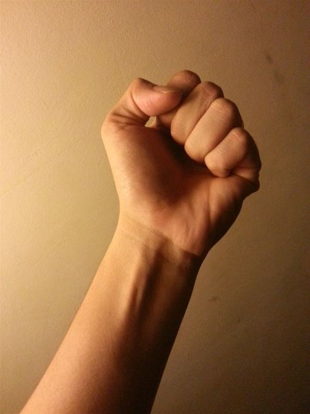 The Truth Truth Be Told The Truth Hurts Truthhurts Fist Bump Fist Bump Hands Hand Grip Holding Tight Tight Gripping Hands At Work Right Fight Fight For A Cause Justice Fight For Justice Just Fair Power Powerful Influence Standing Up