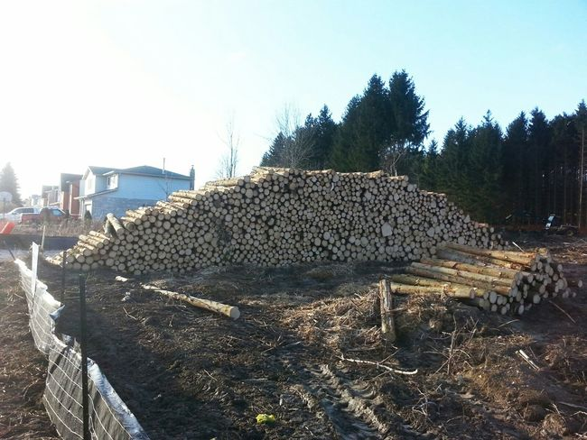 Logging in the City Stacked Logs and Houses