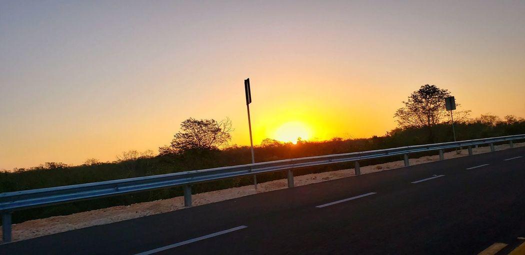 The Mobile Photographer - 2019 EyeEm Awards Tree Sunset Road Rural Scene Sun Sunlight Sky Landscape Plant Empty Road