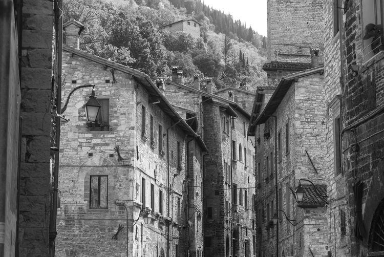 Gubbio, Perugia, Italy Abandoned Alley Architecture Brick Wall Building Building Exterior Built Structure Bw City Day History House Low Angle View Nature No People Old Outdoors Residential District Stone Wall Street The Past Tree Wall Window