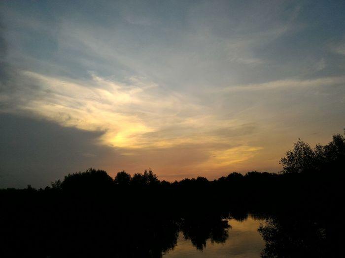 Sunset at Mangrove Park Sunset Mangrove Sky Orange