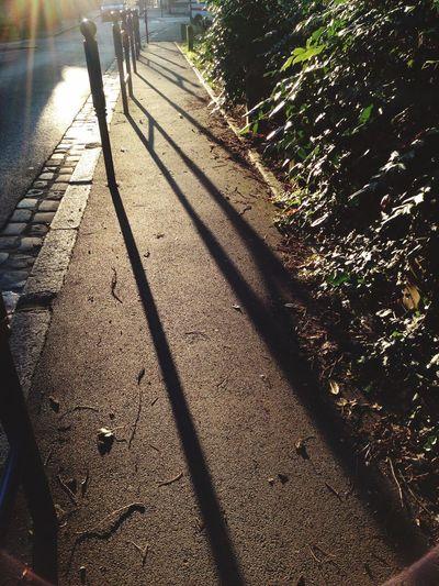 Light And Shadow Shadow Sunnyday Sunny☀