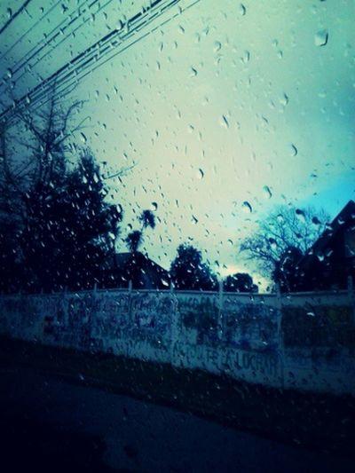 De hace unos días, en ruta Padre las casas, Temuco Fotografías Urbanas Dias De Invierno... Dias De Lluvia Eyeem Urban Photo