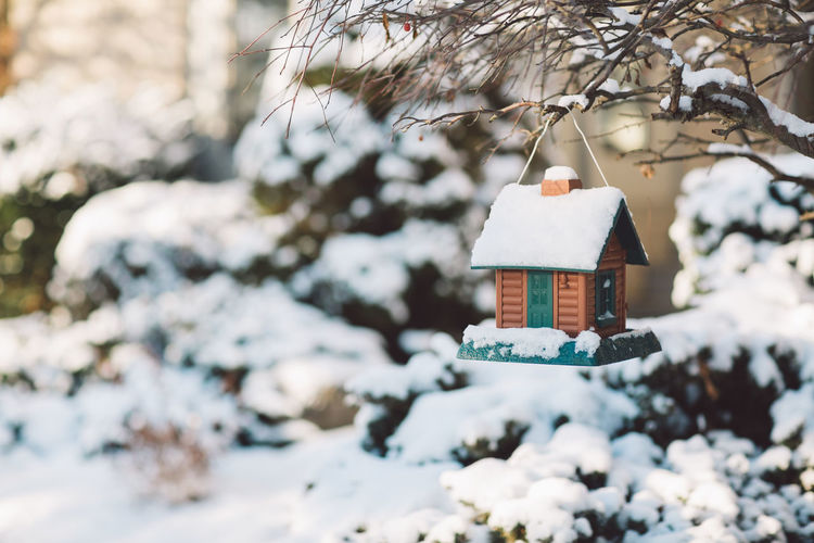 Close-up of snow covered birdhouse
