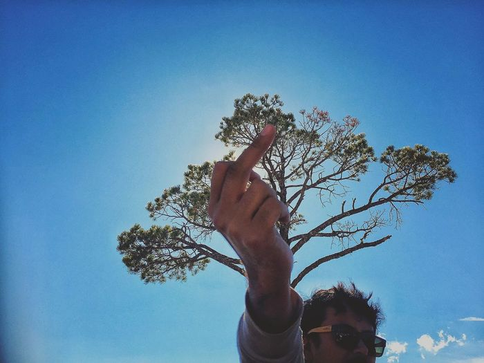 Low angle view of man showing middle finger with tree in background against blue sky