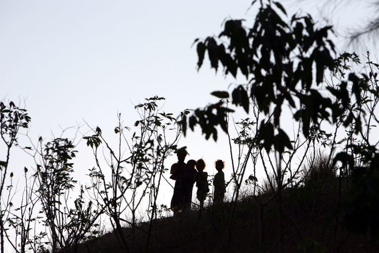Silhouette Woman With Children Standing By Plants On Hill Against Clear Sky During Sunset