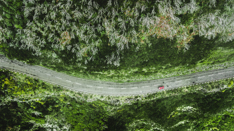 Título: Top view of the car and road on the hill Aerial View Aerial Photography Aerial Shot Drone  Drone Photography DJI Mavic Pro DJI X Eyeem Top View Top Perspective High Angle View Above View Road Roadtrip Road Trip Car Drive Nature Highway Mountain Mode Of Transportation Transportation Travel Travel Destinations Winter Autumn Travel Photography Way Rural Scene Madeira Island Countryside Country Road Still Life Hill Straight Non-urban Scene Beauty In Nature Outdoors Forest Curve Environment Environmental Conservation Adventure Holiday Vacations Trip