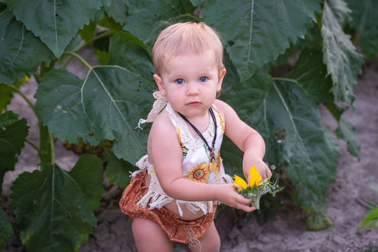 Portrait of cute girl holding flower by plants