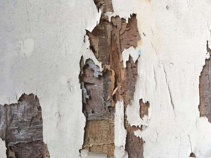 Damaged Textured  Wall - Building Feature Full Frame Weathered Old Backgrounds Peeling Off Decline No People Peeled Deterioration Bad Condition Architecture Pattern Built Structure Paint Run-down Close-up Day