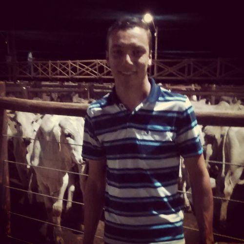Leilao gado de corte, Zootecnia Bovinoculturacorte