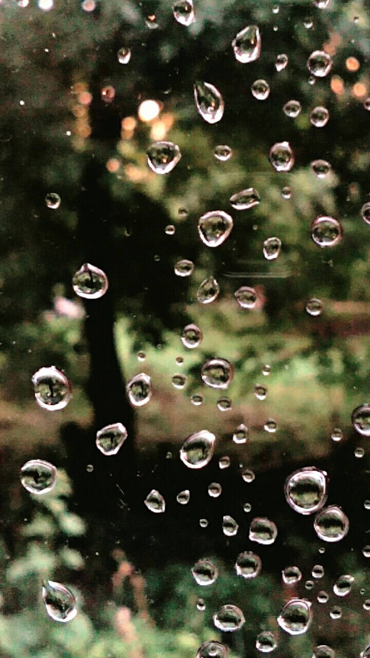 drop, water, wet, backgrounds, rain, full frame, raindrop, transparent, weather, close-up, nature, beauty in nature, water drop, purity, dew, sky, freshness, window, droplet, focus on foreground