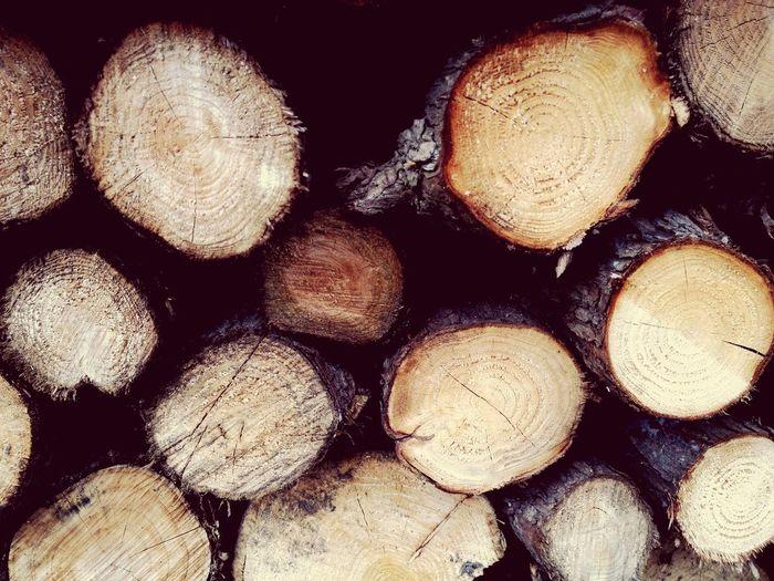 Log pile Trees