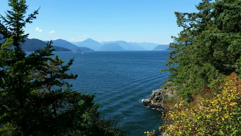 Howe Sound Sea to Sky Howe Sound British Columbia Canada Landscape Daytime Backgrounds Travel Outdoors BC, Canada Vancouver BC Vancouver Squamish Sea To Sky Highway Highway 99 Scenic Drive Travel Destinations West Vancouver Tree Water Mountain Sky Mountain Range Calm Scenics Idyllic Shore