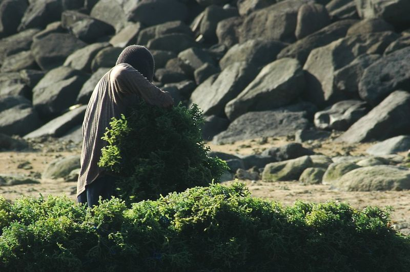 Rear View Of Woman Against Rocks