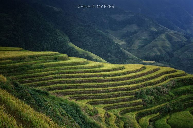 - CHINA IN MY EYES - (fantastic journey) Landscape Nature Beauty In Nature Mountain Exceptional Photographs BEIJING北京CHINA中国BEAUTY Landscapes With WhiteWall EyeEm Best Shots Outdoors Travel EyeEmNewHere Flying High Long Goodbye The Secret Spaces EyeEm Diversity Art Is Everywhere Break The Mold TCPM Neighborhood Map The Great Outdoors - 2017 EyeEm Awards Let's Go. Together.