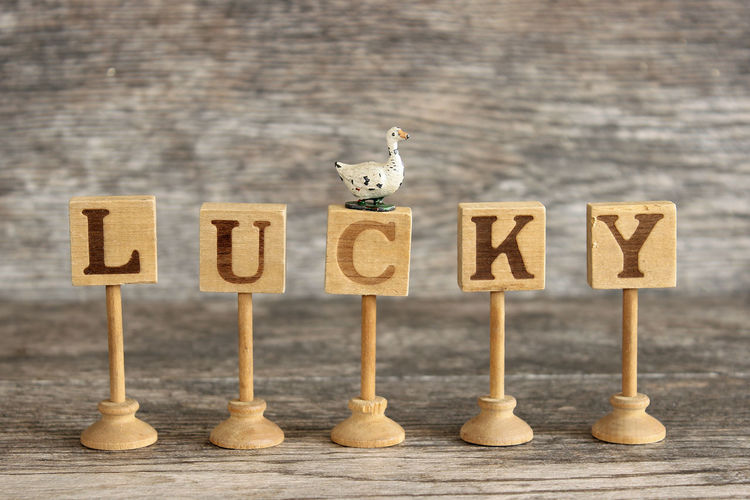 Lucky duck Background Blessed  Charm Concept Duck Fate  Favor Fortunate  Idiom Letter Luck Lucky Lucky Duck Rustic Slang Texture Vintage Wood - Material Word
