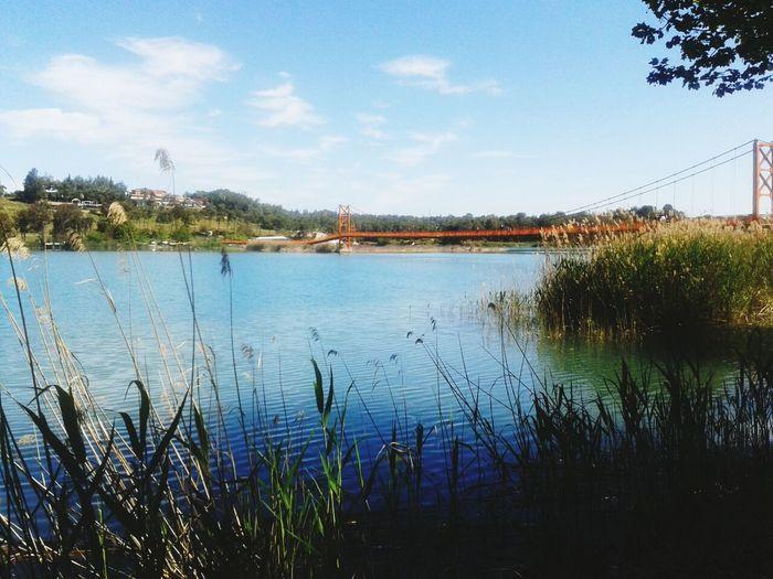 Landscape_Collection EyeEm Best Shots - Landscape EyeEm Gallery Nature_collection EyeEm Best Shots-My World