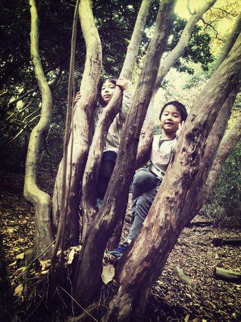 Taking Photos Trees いい感じの樹♪