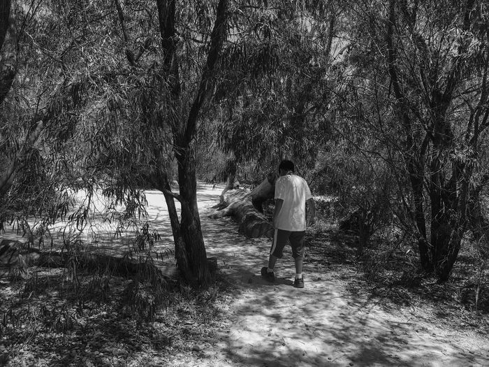 Relaxing Mood Casual Boy Nature Walk Black And White Sunlight Shades Shadow Willow Tree Trunk Log Leaves Free And Easy Travel October 2016 Full Length Rear View Real People Tree Day One Person Lifestyles Leisure Activity Casual Clothing Walking Nature Plant Growth Outdoors Summer Road Tripping
