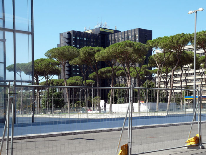 Trees by swimming pool against buildings in city