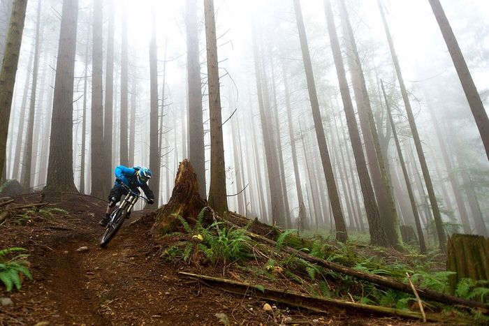 A Foggy Backdrop makes for a Great Day of Mountain Biking on Burke Mountain in Coquitlam British Columbia Canada