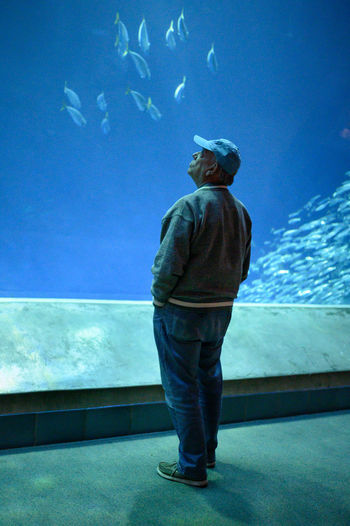 Rear view of man in fish tank at aquarium