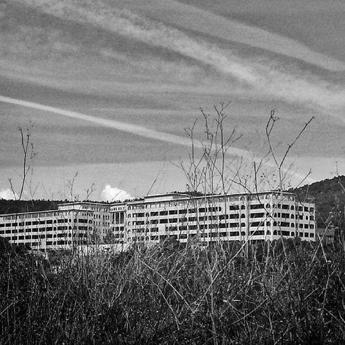 Entre bellos paisajes me consigo con esta leyenda de Terrassa, el HOSPITAL DEL TÓRAX, un hospital que funcionó para personas con problemas respiratorios y que ahora, abandonado, sirve como escenario de varias películas de terror. Muchísimas leyendas envuelven a este gigante hospital, hablan de una actividad paranormal increíble y es que de solo mirarlo y ver sus ventanas selladas y pasillos vacíos, te hace querer quitar la mirada enseguida. Terrassa Hospitaldeltorax Blackandwhite Terror barcelona igerscatalunya bcn photooftheday insta_bwgramers hospital