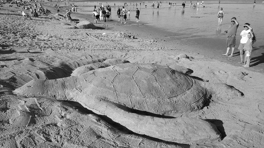 Sand Sculpture Contest Sand Sculpture 🐢 On The Beach Opme⛱ Beach Photography Sea And Sand EyeEm Best Shots B&w Edit EyeEm Best Shots - Black + White S6 Maine Photography 🌲